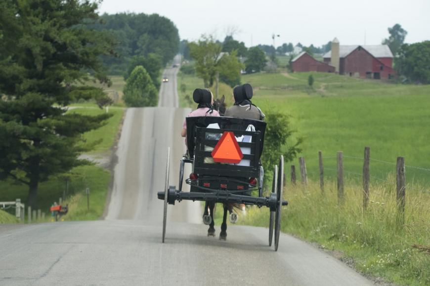 Contea Amish